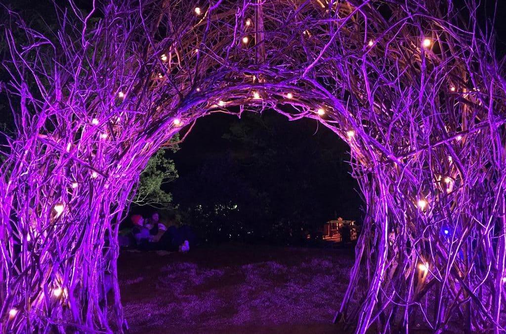 Festa das Luzes Uaná Etê
