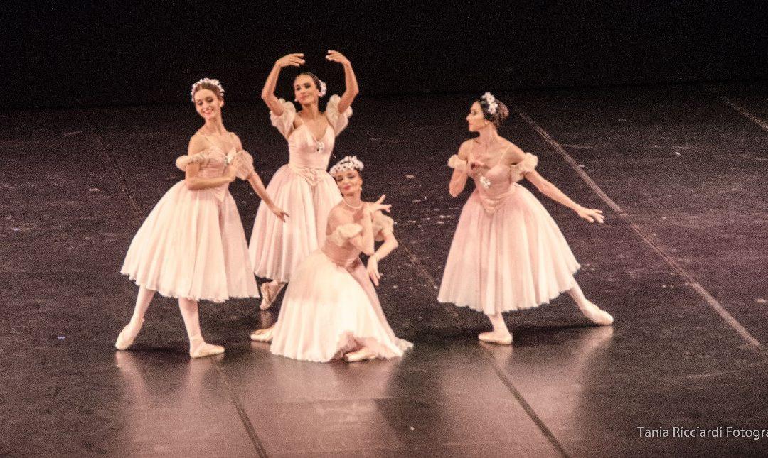 Primavera da Dança no Theatro Municipal
